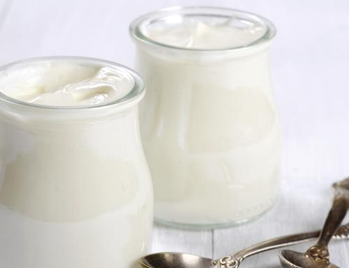 Provesol SM-N – Extrato de soja – Indicado para fermentados de soja sabor iogurte, tofú e sobremesas.